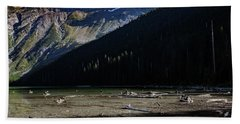 Beach Towel featuring the photograph Late Afternoon On Avalanche Lake by Lon Dittrick