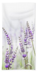 Lavender Flower In The Garden,park,backyard,meadow Blossom In Th Beach Towel by Jingjits Photography