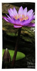 Lavender Water Lily #4 Beach Towel