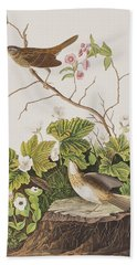Lincoln Finch Beach Towel by John James Audubon