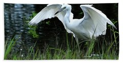 Little Blue Heron Hunting - Digitalart Beach Towel