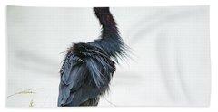Little Blue Heron Portrait Beach Sheet