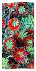Little John Dwarf Bottlebrush Bloom Beach Sheet