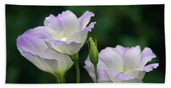 Beach Towel featuring the photograph Lovely Lisianthus by Byron Varvarigos