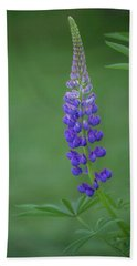 Beach Towel featuring the photograph Graceful Lupine by Jacqui Boonstra