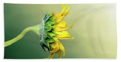 Maria's Sunflower Beach Towel by Mary Timman