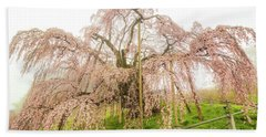 Miharu Takizakura Weeping Cherry02 Beach Sheet by Tatsuya Atarashi
