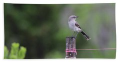 Mockingbird Port Jefferson New York Beach Sheet