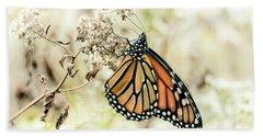 Monarch #1 Beach Sheet