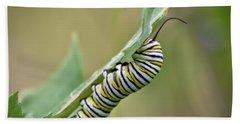 Beach Sheet featuring the photograph Monarch Caterpillar by Kerri Farley