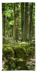 Mossy Forest Beach Towel by Nikki McInnes