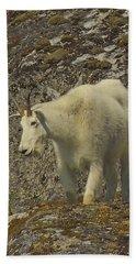 Mountain Goat Ewe Beach Towel