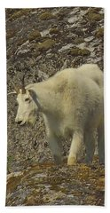 Mountain Goat Ewe Beach Towel