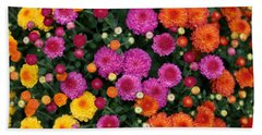Multi Colored Mums Beach Sheet by Living Color Photography Lorraine Lynch