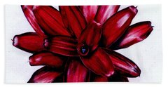 Neoregelia 'christmas Cheer' Beach Towel