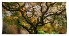Old Japanese Maple Tree Beach Towel