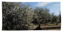 Beach Towel featuring the photograph Olive Trees by Judy Kirouac