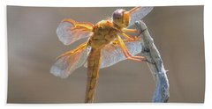 Dragonfly 5 Beach Towel