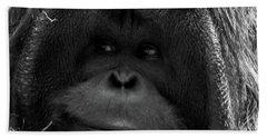 Orangutan Beach Towel by Martin Newman