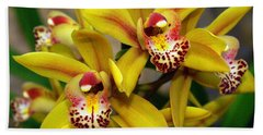 Orchid 9 Beach Towel by Marty Koch