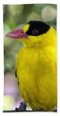 Oriole Wonder Beach Towel