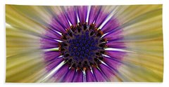 Osteospermum The Cape Daisy Beach Sheet by Shirley Mitchell