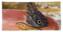 Beach Towel featuring the photograph Owl Butterfly 2 by Paul Gulliver