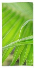 Palm Leaf Detail Beach Towel