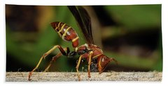 Paper Wasp Beach Towel