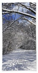 Path In Winter Forest Beach Sheet