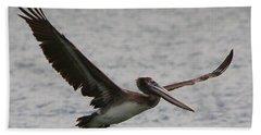 Pelican In Flight Beach Sheet by Laurel Talabere