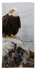 Beach Towel featuring the photograph Perched Bald Eagle by Brandy Little