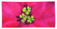 Perfect Poinsettias Beach Towel