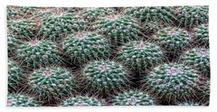 Pincushion Cactus Beach Sheet