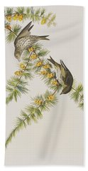 Pine Finch Beach Towel by John James Audubon