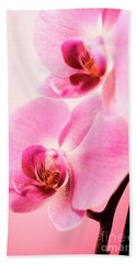 Pink Orchid Closeup Beach Sheet