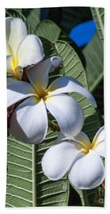 Plumeria Beach Towel by Roselynne Broussard