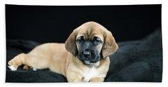 Puppy Love Beach Sheet