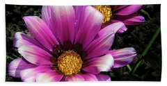 Beach Sheet featuring the photograph Purple Gazania by Elvira Ladocki