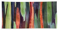 Beach Towel featuring the photograph Rainbow Eucalyptus by Susan Rissi Tregoning