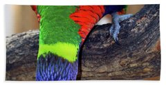 Rainbow Lorikeet Beach Towel by Inspirational Photo Creations Audrey Woods