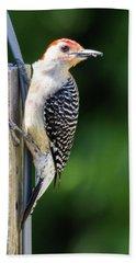 Red-bellied Woodpecker Beach Towel
