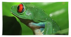 Red Eyed Tree Frog Beach Sheet