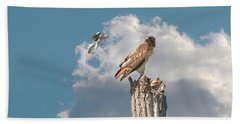 Red-tailed Hawk And Mockingbird Dispute Beach Towel