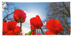 Red Tulips Against Blue Sky Beach Sheet