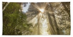 Redwoods Sunburst Beach Towel