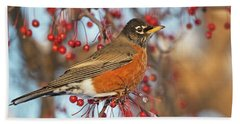 Beach Towel featuring the photograph Robin.. by Nina Stavlund