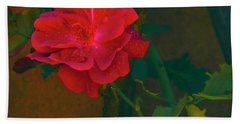 Rose  Beach Towel