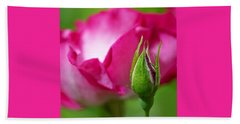Budding Rose Beach Towel