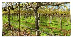 Rows Of Grapevines In Napa Valley Caliofnia Beach Towel